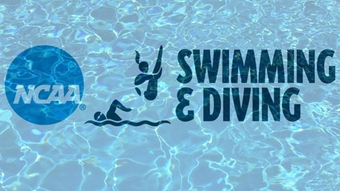 2014 NCAA Division III Northeast-North Diving Regionals (Men's 3m)
